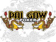 Poker lernen